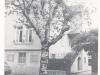 1946-04-schulgebude-rua-da-gondarem-1952