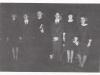 1961-19-konfirmation-66